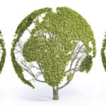 Un Green New Deal globale per dare forza all'economia sociale