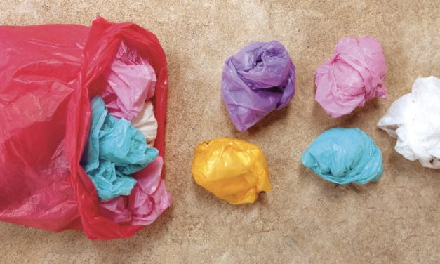 Plastica: una storia a lieto fine?